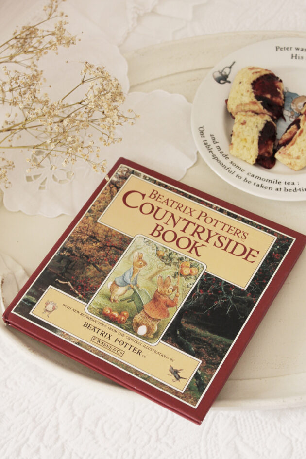 beatrix potter's countryside book