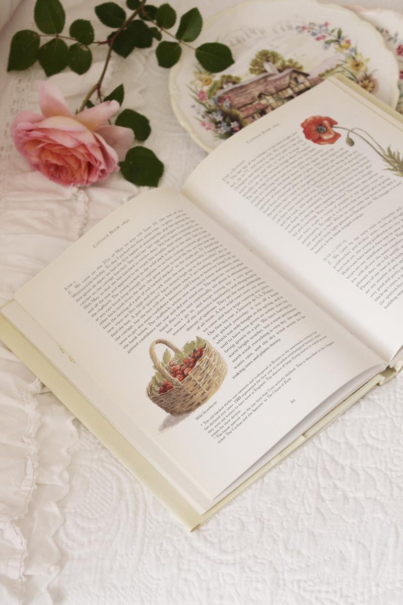 the cottage book vintage