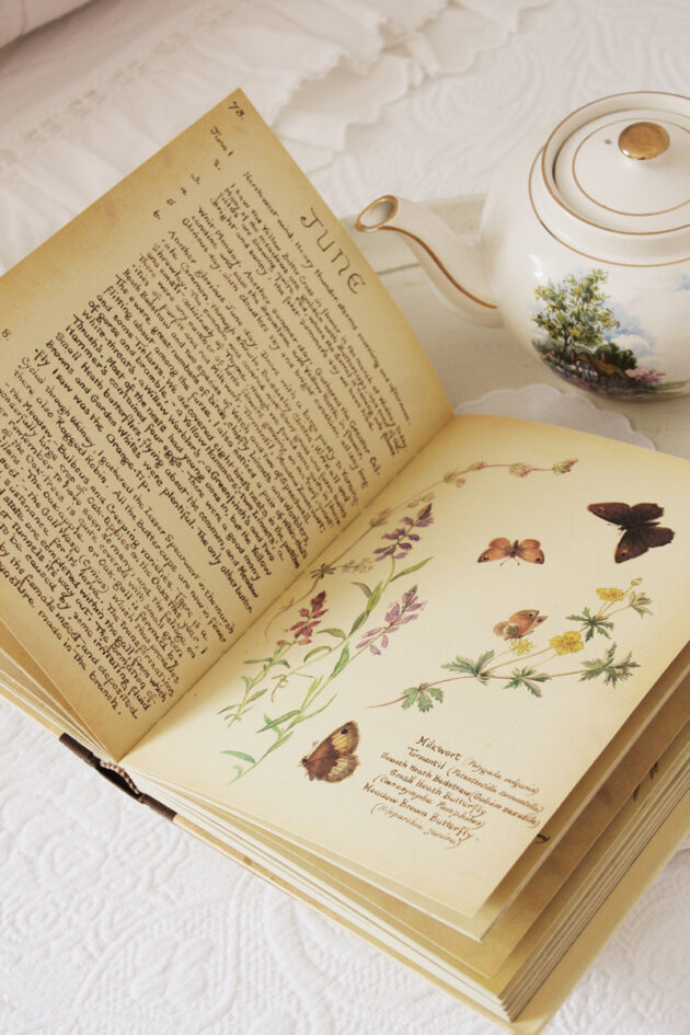 the country diary of an edwardian lady vintage edwardian book